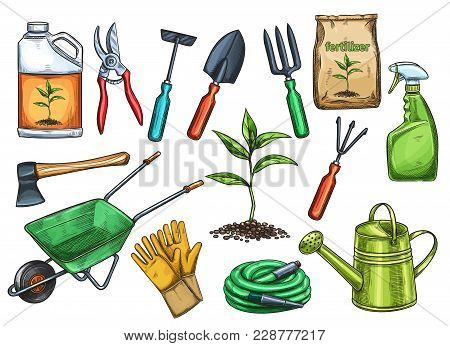 Gardening Tools Vector Illustration In Sketch Style. Axe, Seedling, Gardening Can And Cutter. Fertil