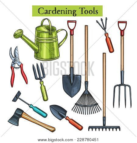Gardening Tools Vector Illustration In Retro Sketch Style. Shovel, Rake And Pruner. Watering Can, Ch