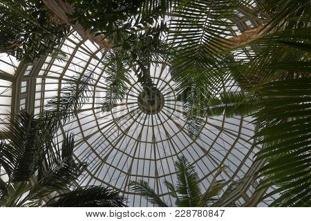 Saint Paul, Mn/usa - April 9, 2017: The Glass Ceiling Of The Como Conservatory In Saint Paul, Minnes