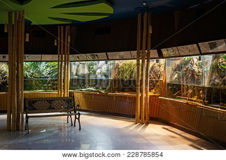 Gdynia, Poland - March 09, 2016: Interior Of The Aquarium In Gdynia. The Gdynia Aquarium Operating S