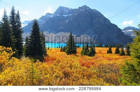 Scenic bow lake landscape in Banff national park
