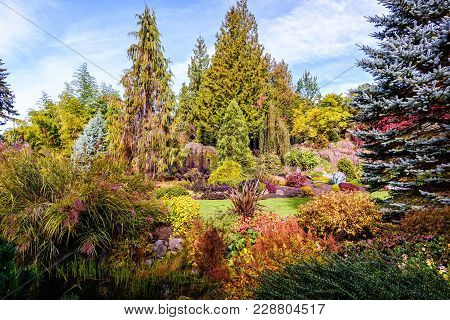 Multicolored Bushes And Trees Around The Glade In The Summer Botanical Garden On A Sunny Day With A