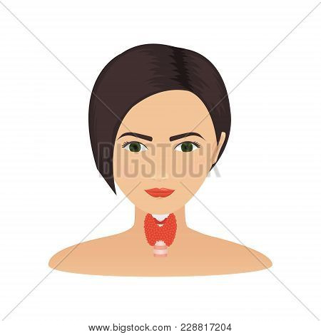 Thyroid Gland And Trachea Shown On A Silhouette Of A Woman. Body Anatomy Sign. Human Endocrine Syste