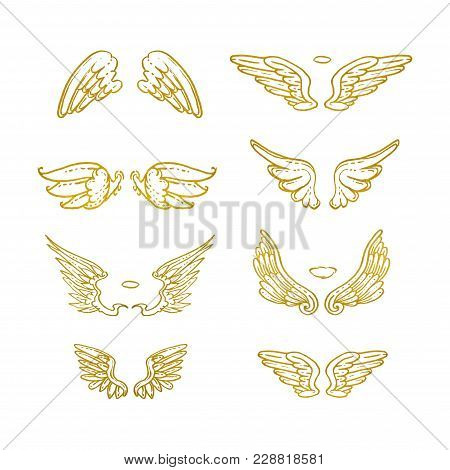 Hand Drawn Wings. Set Of Design Elements. Vector Illustration