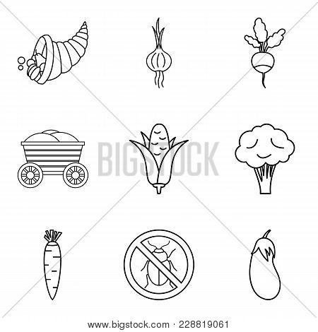 Native Home Icons Set. Outline Set Of 9 Native Home Vector Icons For Web Isolated On White Backgroun