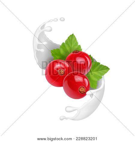 Redcurrant In Yogurt Splash Or Milk Ice Cream Isolated.