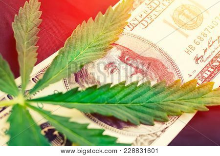 Concept Of Marijuana Sheet Lies On Money Of The American Dollar, Close Cannabis Drugs, Medicine, Bus