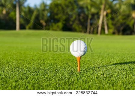 Golf Ball On Tee On Golf Course Over A Blurred Green Field