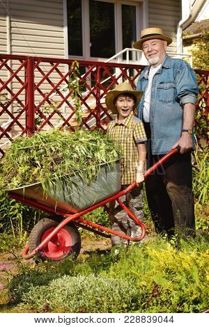 Happy grandpa and his grandson gardening together. Sunny summer day.