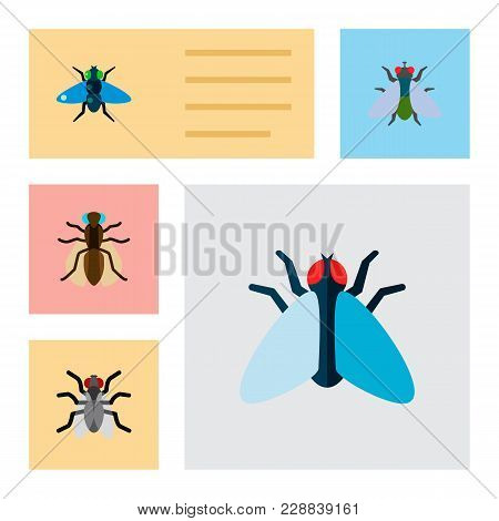 Icon Flat Buzz Set Of Mosquito, Bluebottle, Buzz And Other Vector Objects. Also Includes Fly, Gnat,