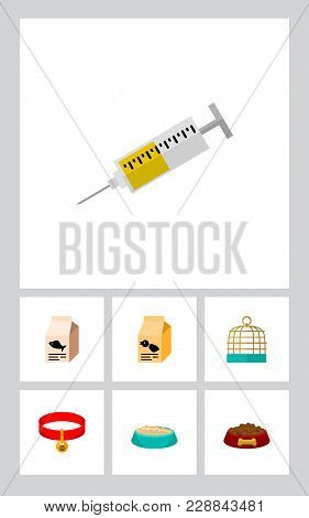 Icon Flat Animal Set Of Syringe, Birdcage, Feeding Box And Other  Objects. Also Includes Food, Box,