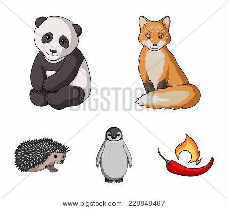 Fox, Panda, Hedgehog, Penguin And Other Animals.animals Set Collection Icons In Cartoon Style Vector