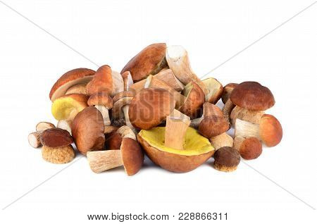 King Boletus Mushrooms Spilling On A White Background