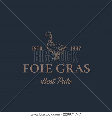 Foie Gras Goose Pate Abstract Vector Sign, Symbol Or Logo Template. Hand Drawn Goose Sillhouette Wit