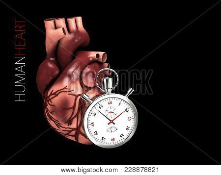 3d Illustration Of Human Heart Anatomy With Stopwatch. Organs Symbol. Isolated On Black Background.