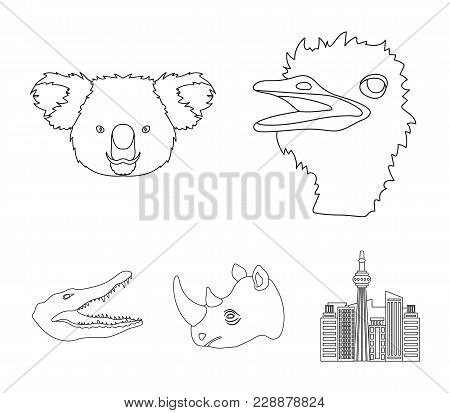 Ostrich, Koala, Rhinoceros, Crocodile, Realistic Animals Set Collection Icons In Outline Style Vecto