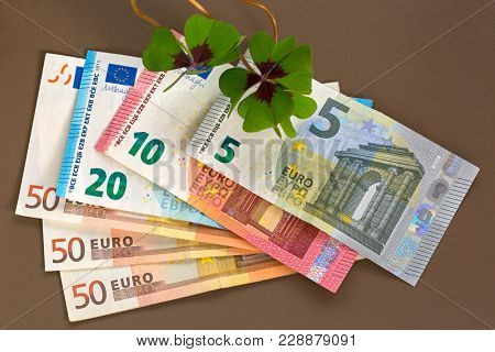 Lucky clover on Euro banknote money. Four-leaf sorrel with 4 hairy leaflets, also called Iron Cross (Oxalis Deppei)