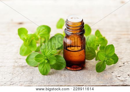 Oregano Essential Oil And Fresh Oregano Leaves On The Wooden Table
