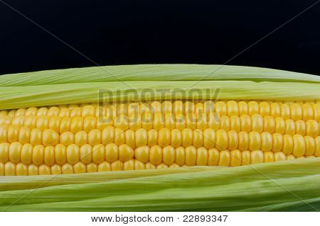 Corn On Black