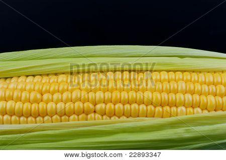 Corn On Black