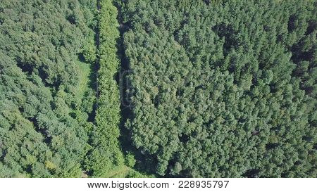 Aerial View Of Small Town Near Forest. Clip. Aerial View Of The Town In A Wooded Area. The Forest Ro