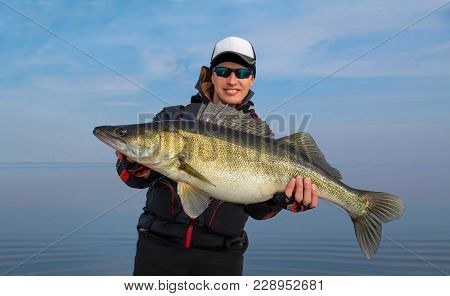 Happy Fisherman With Big Zander Fish Trophy