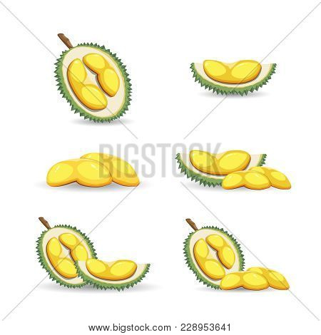 Halves Of An Exotic Durian Fruit Isolated On A White Background. Mature Durian Fruit Or A Smelly Fru