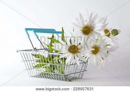 The Shopping Basket With Daisy Isolated On White Background