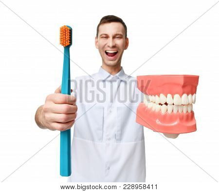 Big Teeth Dummy And Dentist Doctor With Tooth Brush Show How To Properly Brush Your Teeth Isolated O