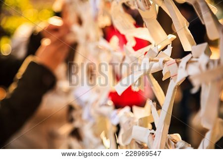 Close-up View Group Of Omikuji, A Fortune Telling Paper Strip, Tied On The Ropes With Blurred Backgr