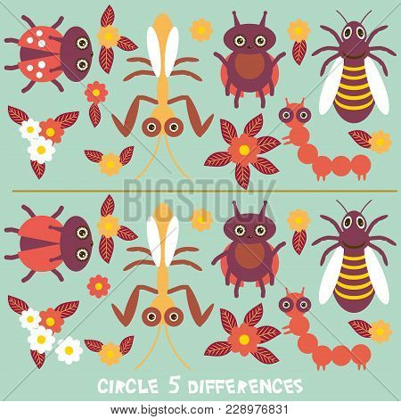 Circle Differences Educational Game For Preschool Children Picture Puzzle: Find The Five Differences