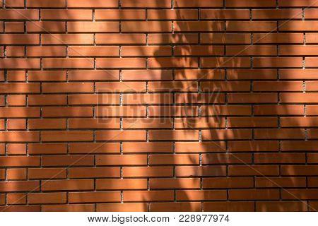 Brick Wall With Shadow Tree At Thailand.