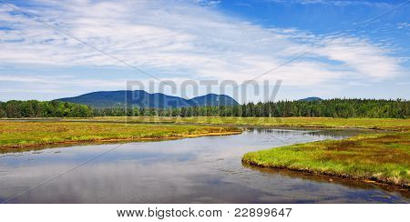 Marshall Brook At Bass Harbor Marsh