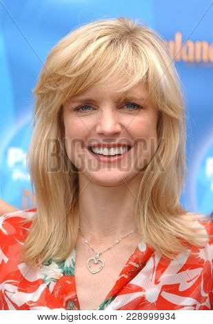 LOS ANGELES - SEP 11:  Courtney Thorne Smith at the ABC Primetime Preview Weekend  on September 11, 2004 in Anaheim, CA.