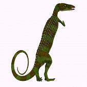 Scutellosaurus Dinosaur Tail 3d illustration - Scutellosaurus was an armored herbivore dinosaur that lived in Arizona, USA during the Jurassic Period. poster