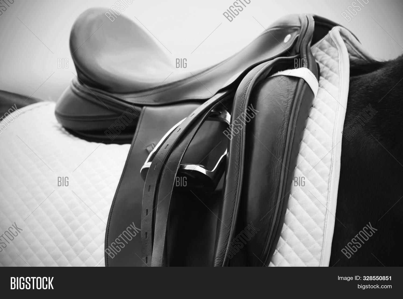 Black White Photograph Image Photo Free Trial Bigstock
