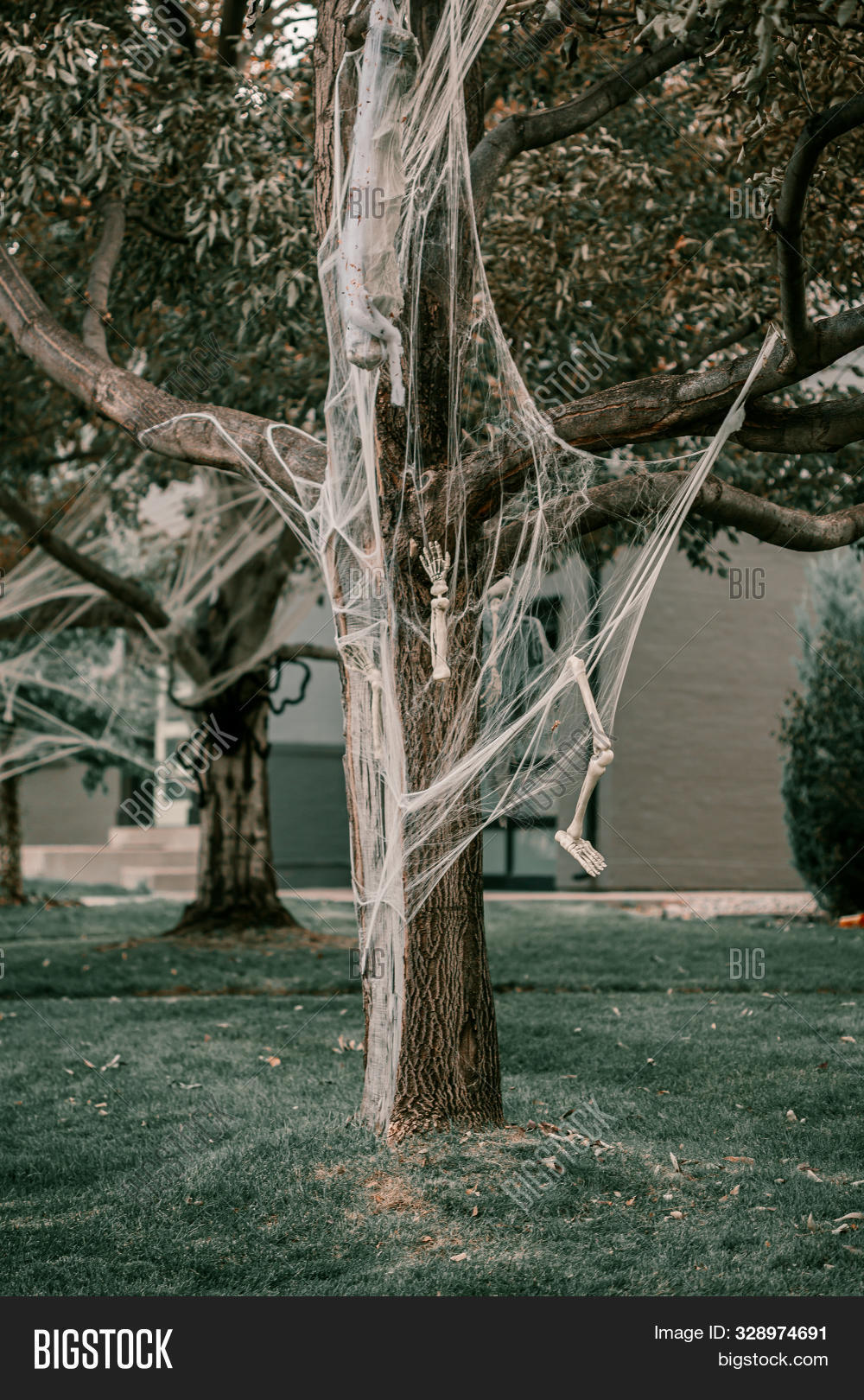 Scary Spooky Halloween Image & Free Trial