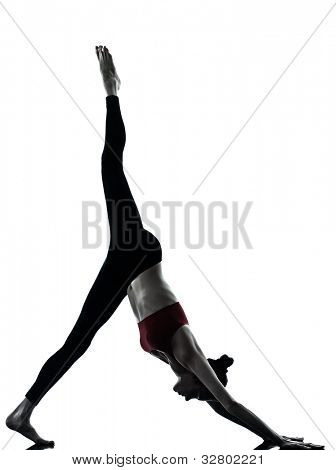 one caucasian woman exercising yoga in silhouette studio isolated  on white background poster