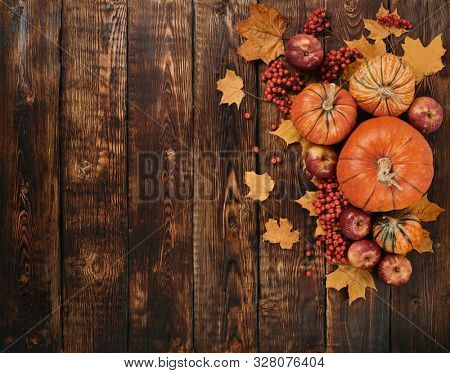 Festive autumn still life  with pumpkins, red apples, berries and leaves on dark  wooden background. Top view with copy space. Concept of autumn harvest, happy Thanksgiving  day or Halloween.