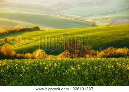 Majestic rural landscape in sunbeams. Beautiful sunlight on the wavy fields Kunkovice village. Location place of South Moravia, Czech Republic. Photo of ecology concept. Discover the beauty of earth.