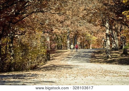 Distant Couple Strolling through a Tunnel of Autumn Leaves poster
