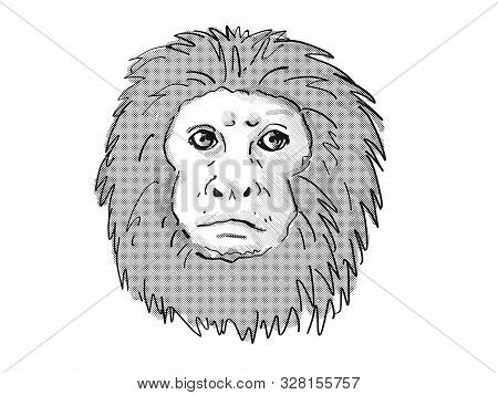 Retro Cartoon Style Drawing Of Head Of A Golden Lion Tamarin Or Leontopithecus Rosalia , An Endanger