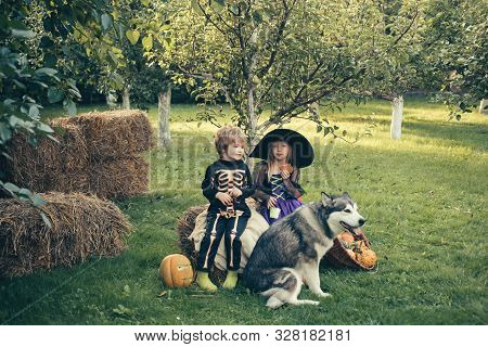 Halloween Kids Party In Garden With Pumpkins. Halloween Party With Children Wearing Halloween Costum