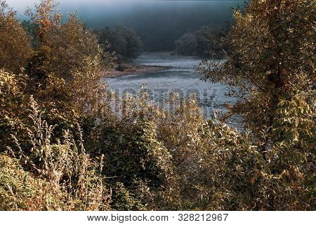Gloomy Autumn Scene With The Olt River And Red Leaves