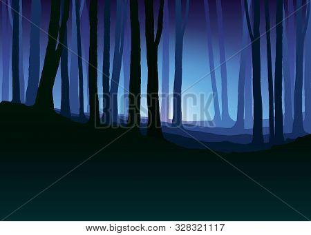 Foggy Forest. Dark Tree Silhouette. Tree Trunks In Blue Mist. Fog In Night Forest Vector Illustratio