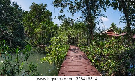 Tha Pom Klong Song Nam Or Emerald Pool In Krabi Province, Thailand. Beautiful Nature Landscape With