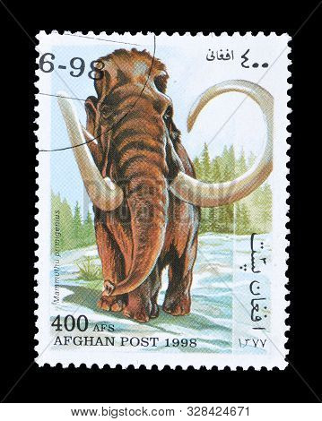 Cancelled Postage Stamp Printed By Afghanistan, That Shows Woolly Mammoth, Circa 1998.