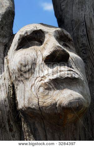 Holz Mann