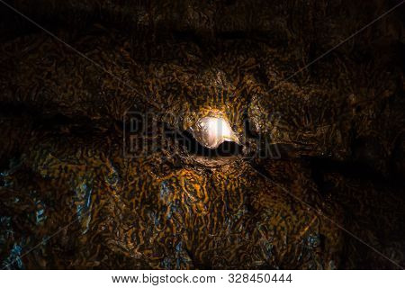 Lighting In The Wall Of A Lava Cave Covered With A Orange Fungal, Organic Coating. The View Opening