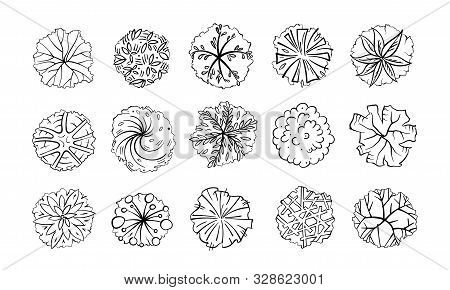 Trees, Bushes And Shrubs, Top View For Landscape Design Plan. Vector Illustration, Isolated On White